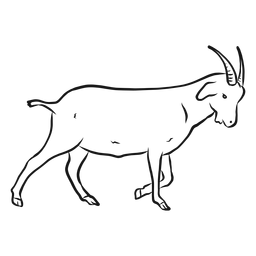 Esboço de rabo de casco de chifre de cabra