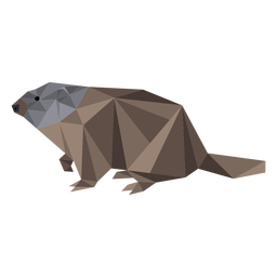 Ground hog marmot fur muzzle low poly