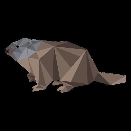 Ground hog marmot fur muzzle low poly Transparent PNG
