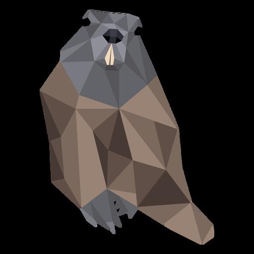 Ground hog marmot fur cauda focinho baixa poli Transparent PNG