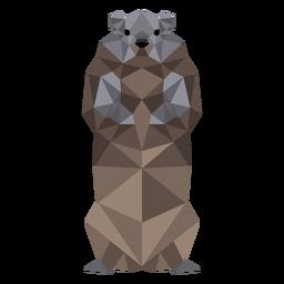Ground marmota focinho pele baixa poli