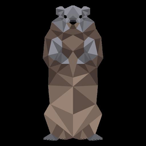 Ground marmota focinho pele baixa poli Transparent PNG