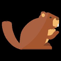 Ground marmota focinho pele sentado plana
