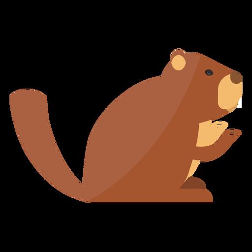 Ground marmota focinho pele sentado plana Transparent PNG