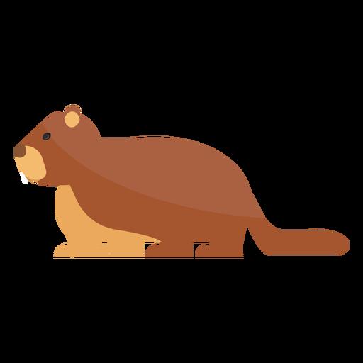 Ground marmota focinho cauda de pele Transparent PNG