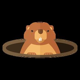 Marmota de cerdo de tierra agujero del hocico piel plana