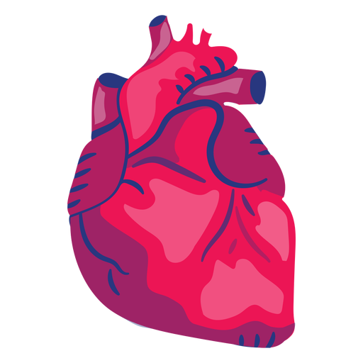 Órgano de corazón plano Transparent PNG