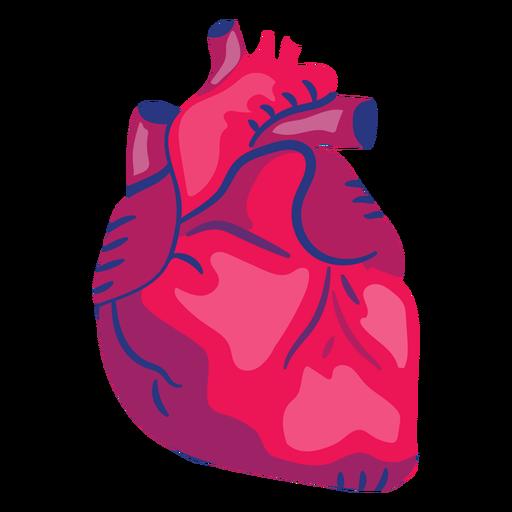 Herzorgel flach Transparent PNG
