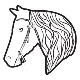Horse mane bridle illustration