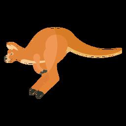 Pata de cola de oreja de canguro salto plano