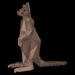 Perna de canguru perna baixa poli