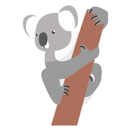 Koala oreja pierna nariz rama plana
