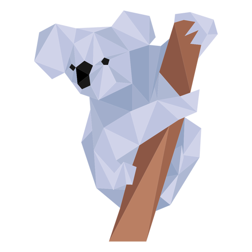 Koala Ohr Bein Nase Nieder Poly Transparent PNG