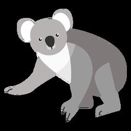 Koala oreja pierna nariz plana
