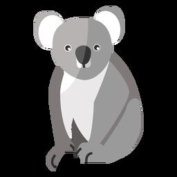 Koala nariz pierna oreja plana