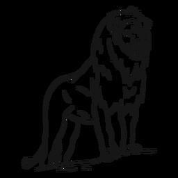 Esboço de rabo-rei juba de leão
