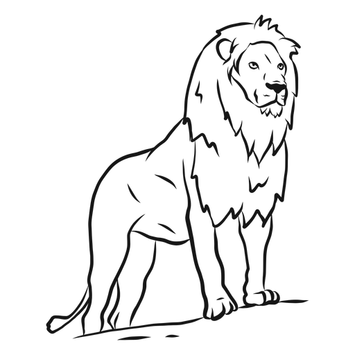 Lion mane king tail sketch Transparent PNG