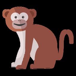 Affe Beinmündung Schwanz flach