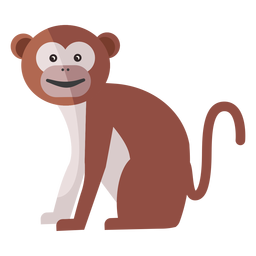 Cauda de focinho de perna de macaco plana