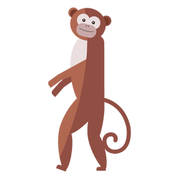 Hocico de cola de mono pierna plana