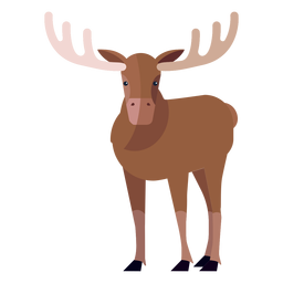 Moose elk antler hoof flat