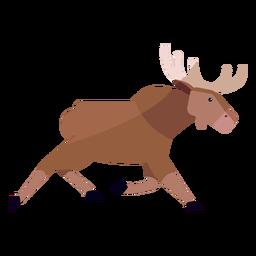 Moose elk antler running flat