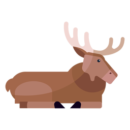 Moose elk hoof antler flat