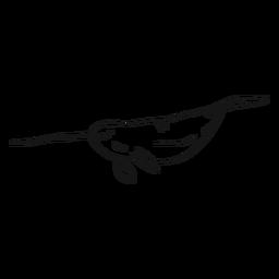 Narwhal Flipper Stoßzahnendstück-Skizze