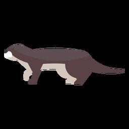 Otter-Mündungsschwanzfett flach