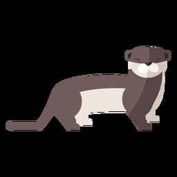 Otter Schwanzmündung flach