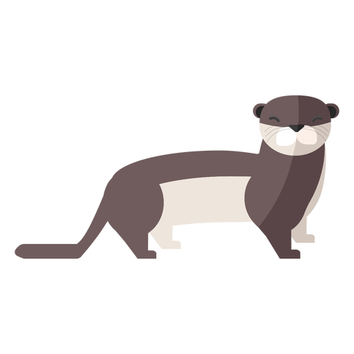 Otter tail muzzle flat Transparent PNG