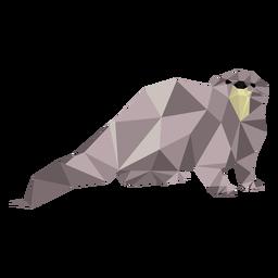 Cauda de lontra focinho perna baixa poli
