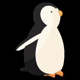 Pinguim bico asa gorda plana