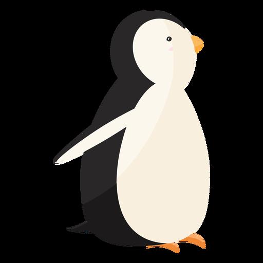 Pico de pingüino ala grasa plana