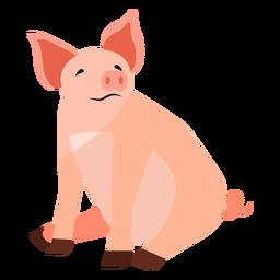 Pig snout ear hoof sitting flat