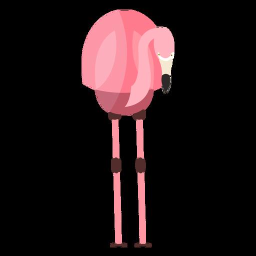 Rosa Flamingobeinschnabel flach Transparent PNG