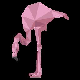 Pierna rosa flamingo pico baja poli