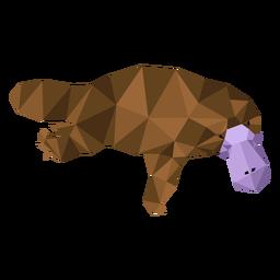 Cola de pato pico de ornitorrinco pierna baja poli