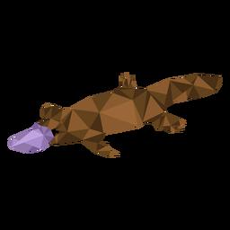 Platypus bico cauda bico de pato baixo poli