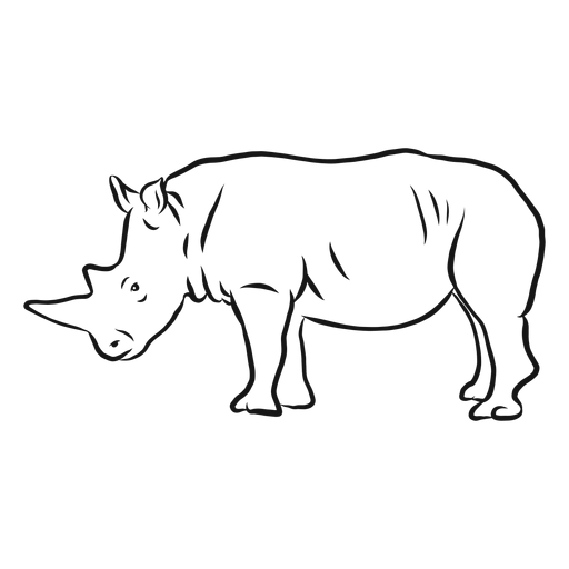 Bosquejo de rinoceronte cuerno rinoceronte Transparent PNG