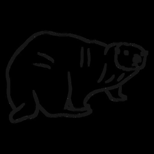 Sea otter muzzle fat tail sketch Transparent PNG