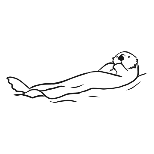 Sea otter muzzle swimming sketch Transparent PNG