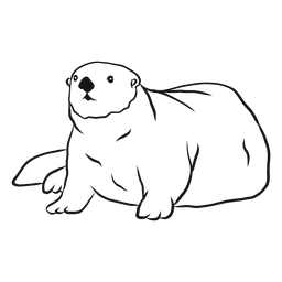 Sea otter muzzle tail fat sketch