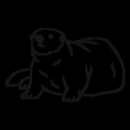 Sea otter muzzle tail fat sketch Transparent PNG