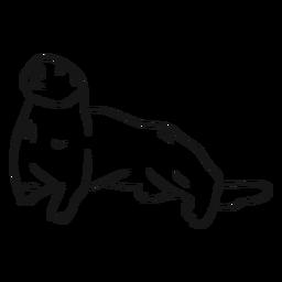 Sea otter muzzle tail sketch