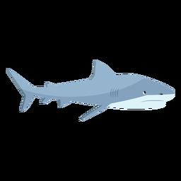 Cauda de barbatana de tubarão plana
