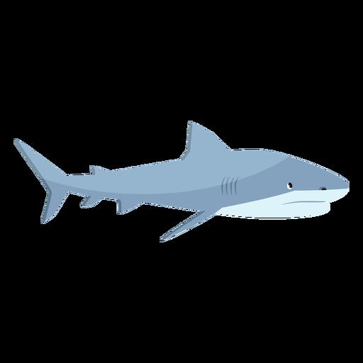 Aleta de tiburón cola plana Transparent PNG