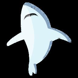 Aleta de tiburón diente cola plana