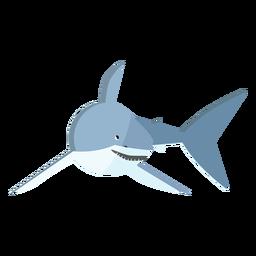 Diente de aleta cola de tiburón plana