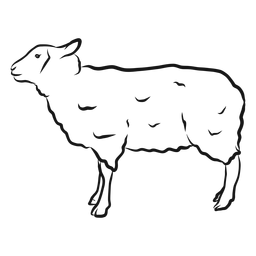 Bosquejo de cordero de oveja lana cordero
